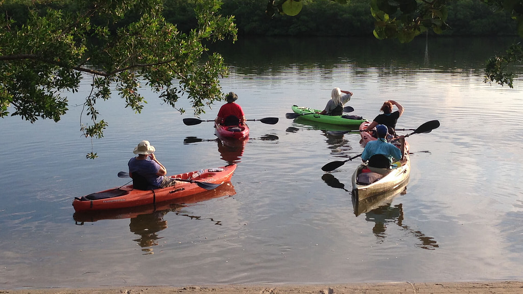 Join a Guided Kayak Eco Tour on Kayaks and Paddle Boards with SUP Englewood