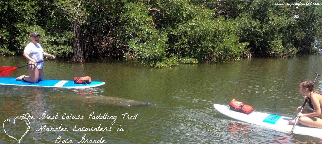 Paddle Board and Kayak in Boca Grande