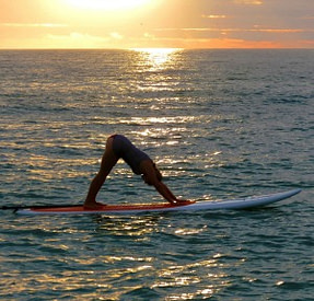 Paddle Board Yoga Instructor at SUP Englewood