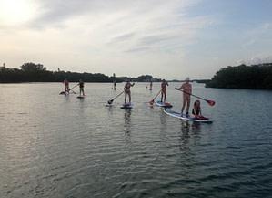 Paddle Boarding in Lemon Bay