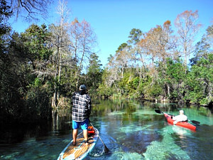 Paddle Board and Kayak Weeki Wachee Springs State Park