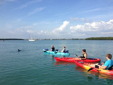Kayak Rentals and Guided Eco Tours in Englewood Florida