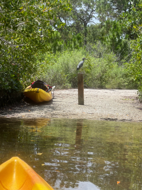 Kayak Launch at the Bill Coy Preserve