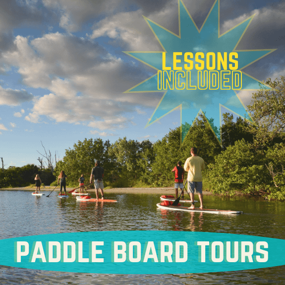 lessons included in paddle boarding tours