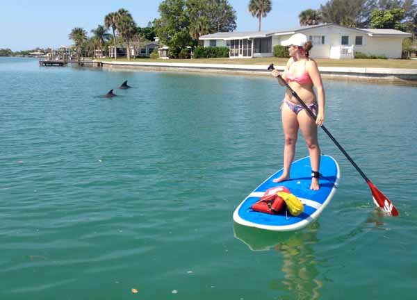 Paddle board and kayak with Dolphins